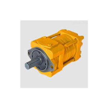 Rohs Leather Machinery Qt6153-200-63f Sumitomo Gear Pump